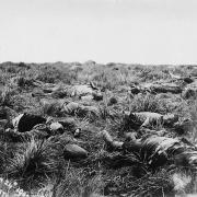Die eerste fase van die Anglo-Boereoorlog